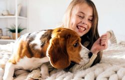How Importance To Build A Strong Bond With Your Pet