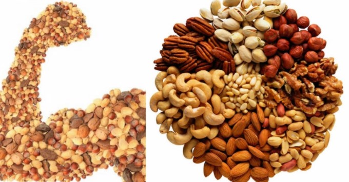 What Does Proteins Do In Our Body